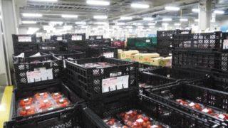 食品配送のルートドライバーの仕事内容と業務の特徴_アイキャッチ