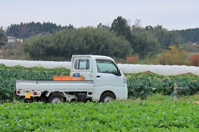 軽トラックのサイズ・荷台寸法_1